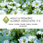 adult-pediatric-allergy-associates