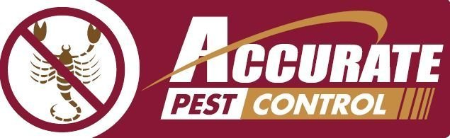 Accurate pet control chooses WSI for web design and SEO