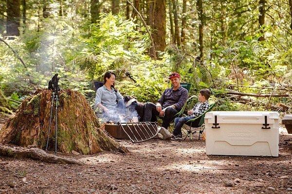 Cascade Mountain Tech Teams with WSI for SEO Campaign