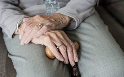 Senior Home Care Agency Renews Local SEO Program with WSI